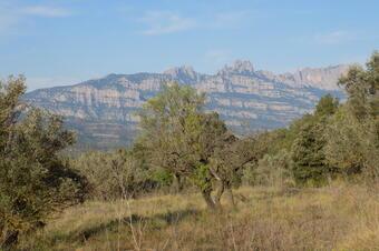 Montserrat des de Vacarisses