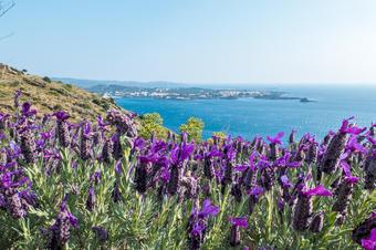 Vistes a la badia de Cadaqués i es Caials. Ruta de Cadaqués al Far de Cala Nans.