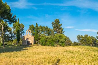 Sant Salvador de Torre Abadal. Santpedor.