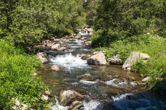 """Riu Núria. Ruta """"Camí Vell de Queralbs a Núria"""". Parc Natural de Capçaleres del Ter i el Freser."""