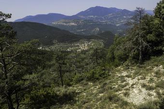 Volta al terme per la Via, collada de Sobirana i l'Anzinet. Sant Julià de Cerdanyola.