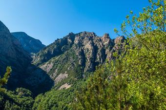 """Vistes al Parc Natural. """"Ruta al Salt del Grill de Queralbs"""". Parc Natural de Capçaleres del Ter i del Freser."""