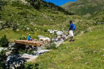 Pont sobre el riu de Finestrelles. Santuari de Núria. Parc Natural de Capçaleres del Ter i del Freser.