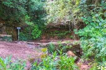 Font i torrent del Forn. Rajadell
