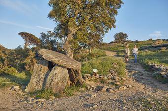 Dolmen del Cap de l'Home