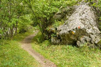 Ruta circular Setcases-Carboners-Baidana-Setcases. Parc Natural de les Capçaleres del Ter i el Freser.