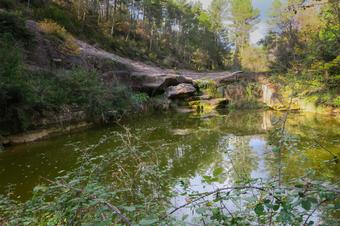 Ruta per les rieres de Sorba: l'Aigua d'Ora i Gargallà. Montmajor