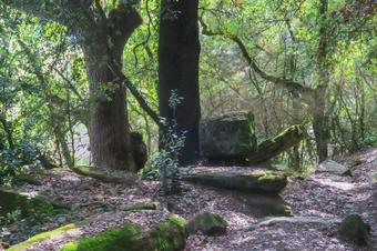 Ruta a la Font de la Riera. SantJulià de Vilatorta