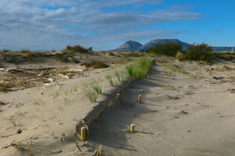 Itinerari de la Pletera. Parc Natural del Montgrí, les Illes Medes i el Baix Ter