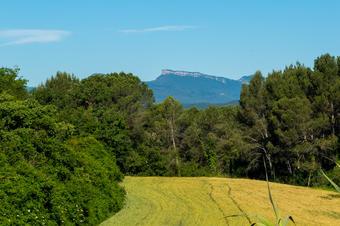 Vistes a la muntanya de Rocacorba. Bescanó