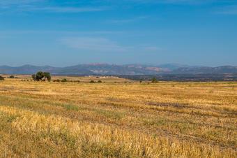 Espais Naturals de Ponent. Serra de Bellmunt. Ruta ornitològica de Montgai.