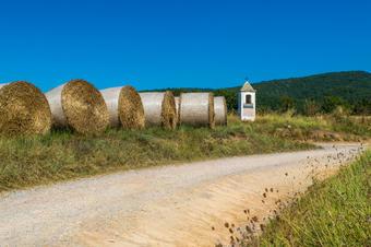 Ruta dels Pedrons. Sant Boi de Lluçanès.