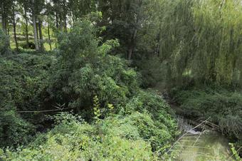 Espai Natural de la Serra de Bellmunt-Almenara. Ruta per Butsènit