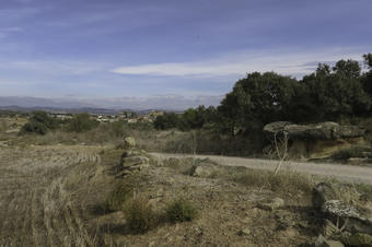 Rutes a la Serra de Bellmunt-Almenara