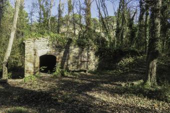 Ruta dels molins de Seva