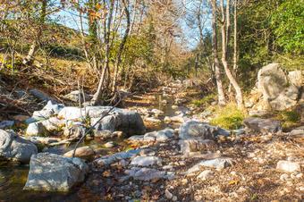 Ruta del Joc Mediambiental per la Vall de Fuirosos. Sant Celoni.