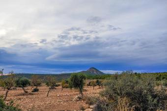 Seròs. Secans de Segrià-Utxesa. Espais Naturals de Ponent.