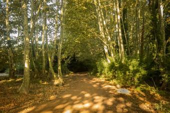 Via Verda de Vallgorguina. Vallgorguina