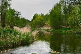 Passeig pel riu. La Corbatera. Sallent