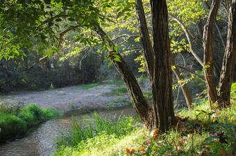 El Tordera i el Parc de les Rieres