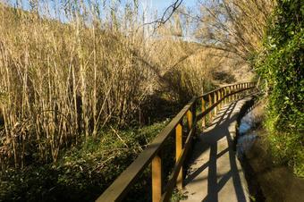 Camí del Riu. Sant Quintí de Mediona
