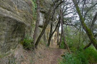 Ruta dels dominis de Tavèrnoles.