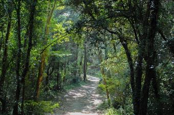 Ruta de Palau-el Virgili-Palau. Santa Maria de Palautordera