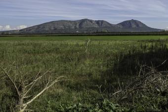 El pla d'Ullà i la resclosa del Ter. Parc Natural del Montgrí, Illes Meses i Baix Ter