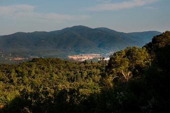 Cap a la vall veïna d'Olzinelles.