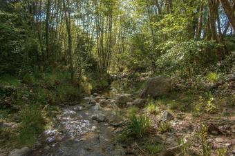 Etapa 3. Romanyà de la Selva - Palamós. Gran Volta a les Gavarres