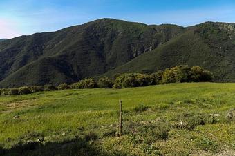 Vall de la Castanya i el Cafè. El Brull
