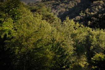 Ruta per la Vall de Siarb