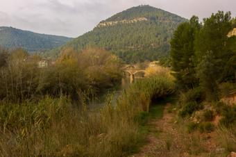 Vistes sobre els ponts del Llobregat i el Turó del Marquès