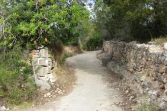 Camí fondo de Mas Pascual. El Catllar.