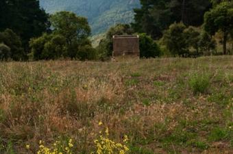 Roques i pedres de Vallgorguina.