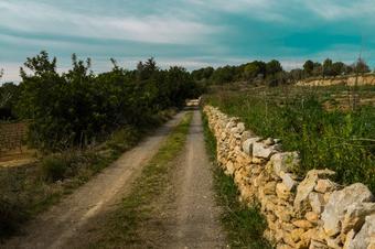 Camí a Sant Simplici. El Catllar