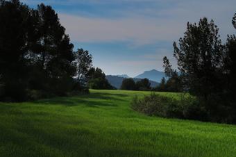 Un tomb del camí de Serrasanç. Sallent.