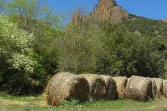 """Ruta """"Les Montserratines"""", Odèn."""