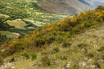 Ruta de les mines R7. Ribes de Freser.