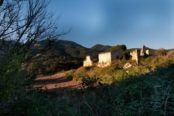 Itinerari de Can Puig