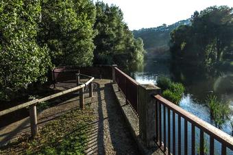 Les riberes del Ter. Girona