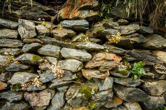 De Capdella al pantà de Sallente. La Vall Fosca