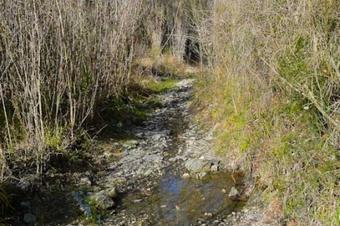 Espai Natural de Roques Blanques. Hostalets de Pierola