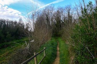 Ruta entre Rius. Fornells de la Selva