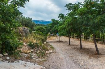 """""""Ruta de la Cova del Rector"""". Pradell de la Teixeta."""