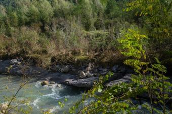 Un tomb mediambiental pel riu. Guardiola de Berguedà