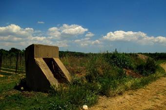 """Ruta """"L'illa dels Salzes i l'antic camp d'aviació de Celrà"""". Celrà."""