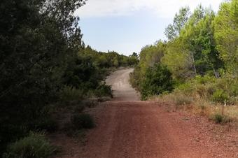 Camí de la Serra, Sant Quintí de Mediona