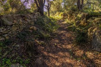L'estany i el poblat ibèric d'Ullastret. Parc Natural del Montgrí, Illes Medes i Baix Ter