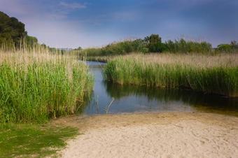 Desembocadura del riu Gaià. Altafulla